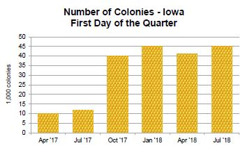 Chart comparing number of honey bee colonies in Iowa by quarter