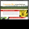 Conserving Bees in Iowa Field Crops