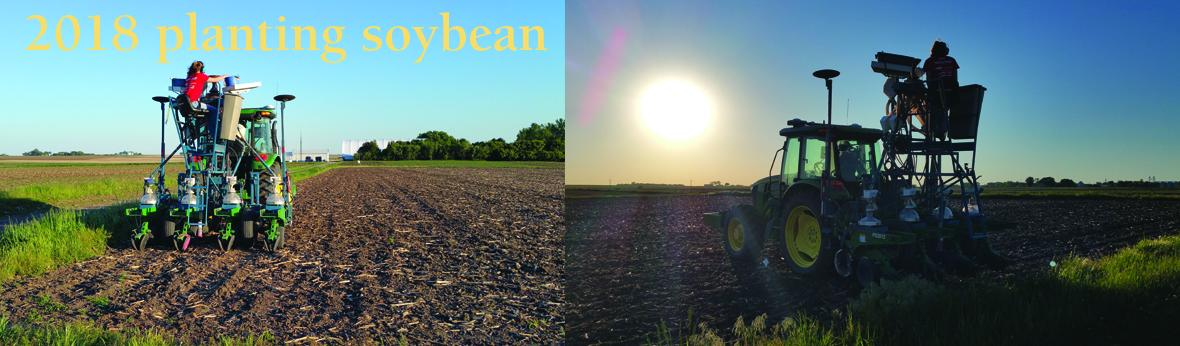 2017 planting soybean